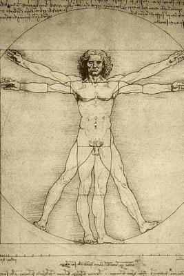 Journal: Leonardo Da Vinci Vitruvian Man Cover Image