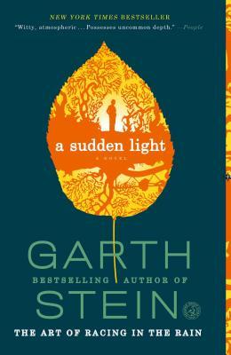 A Sudden Light Cover
