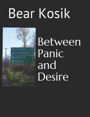 Between Panic and Desire Cover Image