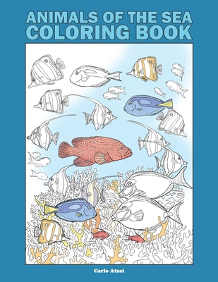 Animals Of The Sea Coloring Book 25 Realistic Coloring Pages On Marine Wildlife Paperback Dolly S Bookstore