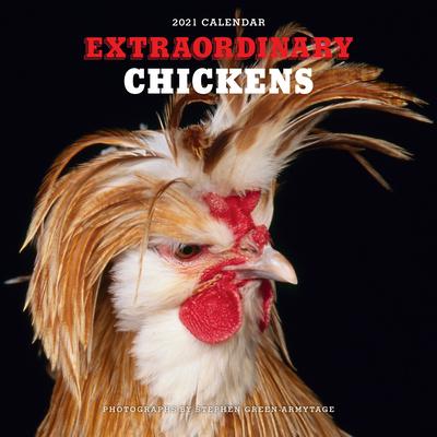 Extraordinary Chickens 2021 Wall Calendar Cover Image