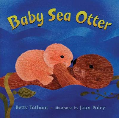 Baby Sea Otter Cover