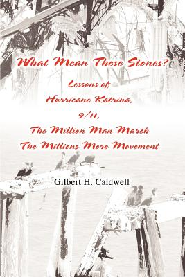 What Mean These Stones?: Lessons of Hurricane Katrina, 9/11, The Million Man March The Millions More Movement Cover Image