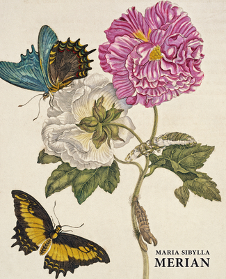 Maria Sibylla Merian (Artist Monographs) Cover Image