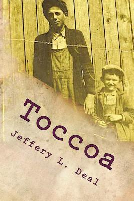 Toccoa: Dark Secrets of a Small, Georgia Town Cover Image