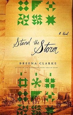 Stand the Storm Cover