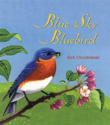 Blue Sky Bluebird Cover