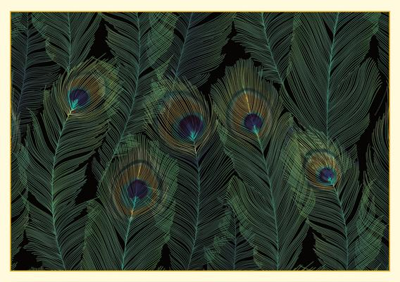 Note Card Feathers Cover Image