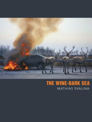 The Wine-Dark Sea Cover