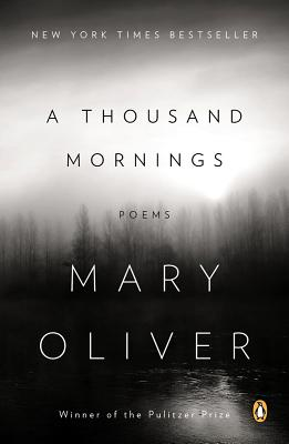 A Thousand Mornings Cover