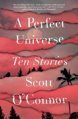 Cover for A Perfect Universe