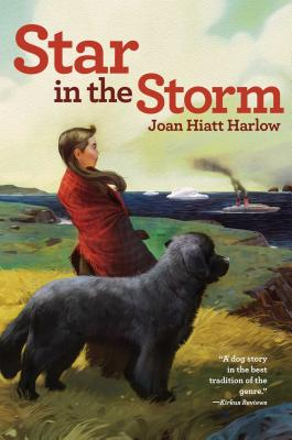 Star in the Storm Cover Image