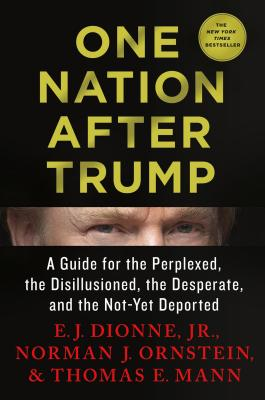 One Nation After Trump: A Guide for the Perplexed, the Disillusioned, the Desperate, and the Not-Yet Deported Cover Image