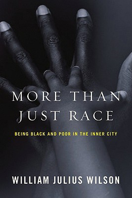 More Than Just Race Cover