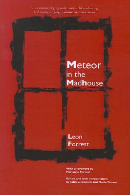 Meteor in the Madhouse Cover Image