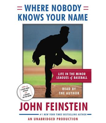 Where Nobody Knows Your Name: Life in the Minor Leagues of Baseball Cover Image