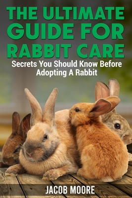 The Ultimate Guide for Rabbit Care: Secrets You Should Know Before Adopting A Rabbit Cover Image