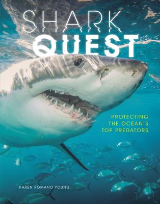 Shark Quest Cover Image