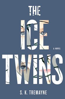 The Ice Twins: A Novel Cover Image