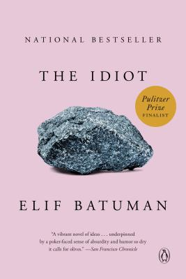 The Idiot: A Novel Cover Image