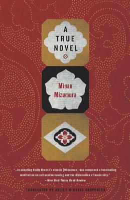 Cover for A True Novel