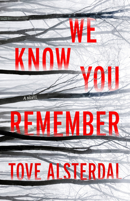 We Know You Remember: A Novel (The High Coast Series #1) Cover Image