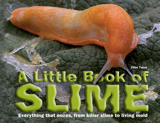 A Little Book of Slime Cover
