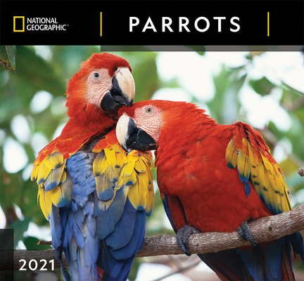 Cal 2021- National Geographic Parrots Wall Cover Image