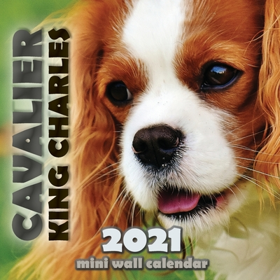 Cavalier King Charles 2021 Mini Wall Calendar Cover Image