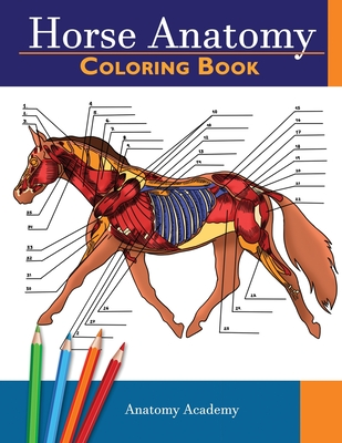 Horse Anatomy Coloring Book: Incredibly Detailed Self-Test Equine Anatomy Color workbook - Perfect Gift for Veterinary Students, Horse Lovers & Adu Cover Image