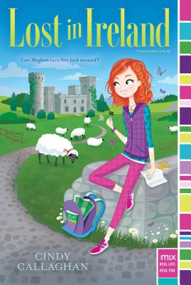 Lost in Ireland (mix) Cover Image