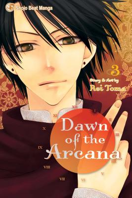 Dawn of the Arcana, Volume 3 Cover