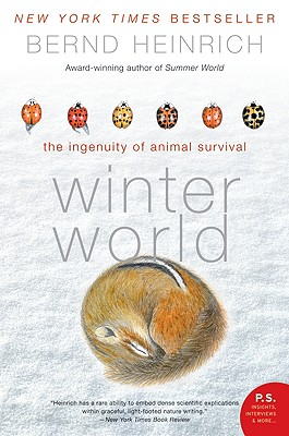 Cover for Winter World