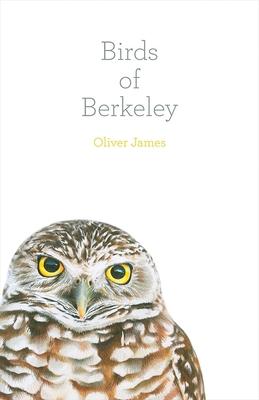BIRDS OF BERKELEY, by Oliver James