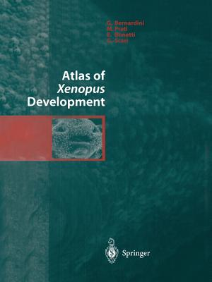 Atlas of Xenopus Development Cover Image