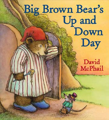 Big Brown Bear's Up and Down Day Cover