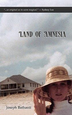 Land of Amnesia Cover