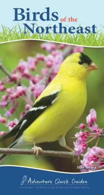 Birds of the Northeast: Your Way to Easily Identify Backyard Birds (Adventure Quick Guides) Cover Image