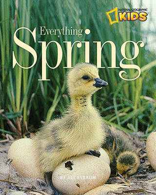 Everything Spring Cover