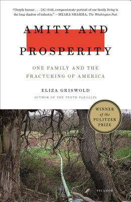 Amity and Prosperity: One Family and the Fracturing of America Cover Image