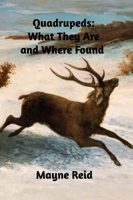 Quadrupeds: What They Are and Where Found Cover Image
