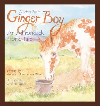 A Letter From Ginger Boy, An Adirondack Horse Tale Cover Image