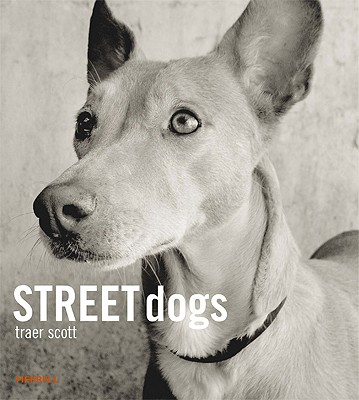 Cover for Street Dogs
