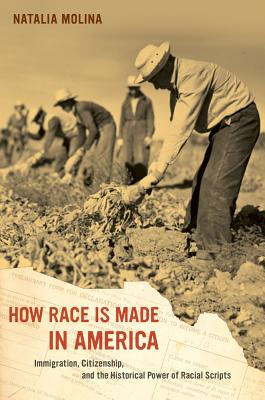 How Race Is Made in America: Immigration, Citizenship, and the Historical Power of Racial Scripts (American Crossroads #38) Cover Image