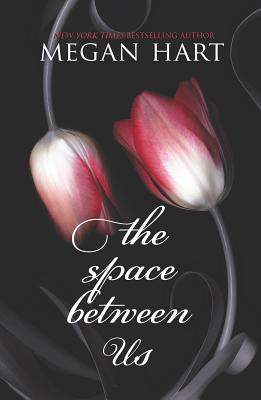 The Space Between Us Cover