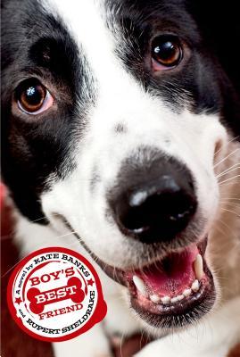 Boy's Best Friend Cover Image