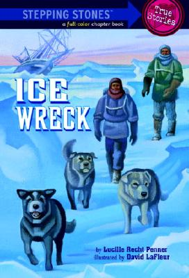 Ice Wreck Cover Image