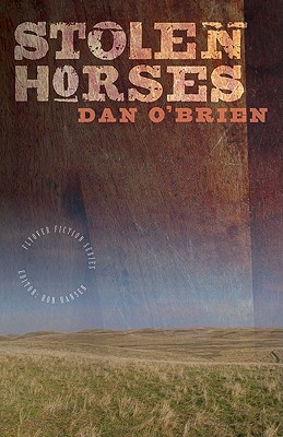 Stolen Horses (Flyover Fiction) Cover Image
