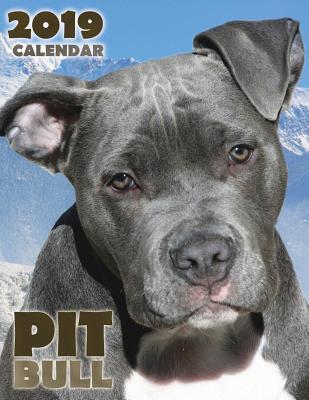 Pit Bull 2019 Calendar Cover Image