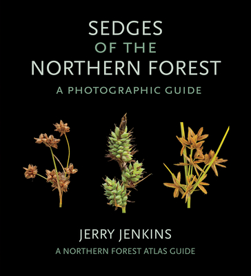 Sedges of the Northern Forest: A Photographic Guide (Northern Forest Atlas Guides) Cover Image